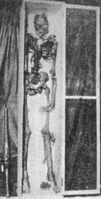 莫那魯道的骸骨
